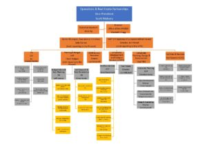 VPOREP summary Organizational Structure